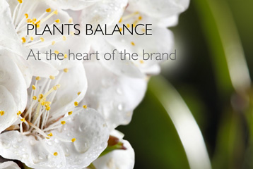case marque en at the heart of the brand