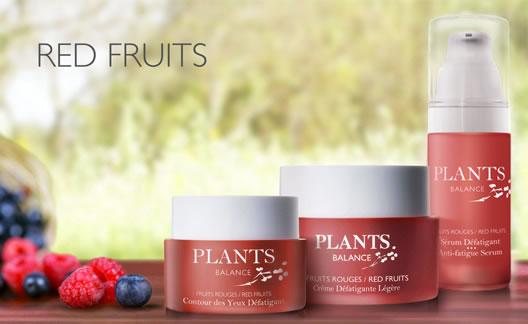 collection fruits rouges en